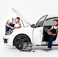 Professionelle-Fahrzeug Besichtigung-vor-Ort